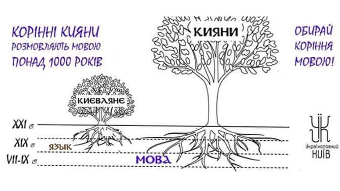 Моварт №7. Мова і коріння
