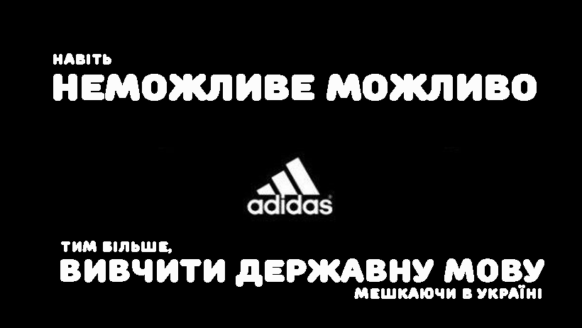 Моварт №41